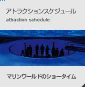 アトラクションスケジュール attraction schedule マリンワールドのショータイム